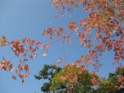 Ashton_Kyoto_day_1_027.jpg