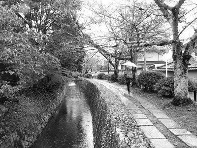 Emma_Kyoto_172.jpg