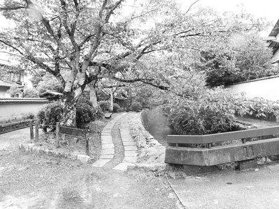 Emma_Kyoto_173.jpg