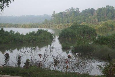 Tasek Bera, Pahang