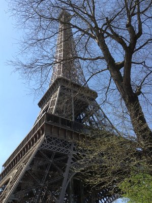 Eiffel Tower from the ground. 250413