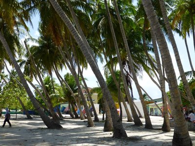 Himmafushi Island 110813 (26)