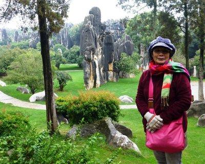Stone Forset, Kunming