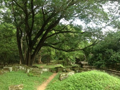 The  green, cool shade at Bhapoun Temple with old temple stones on the ground to be restored