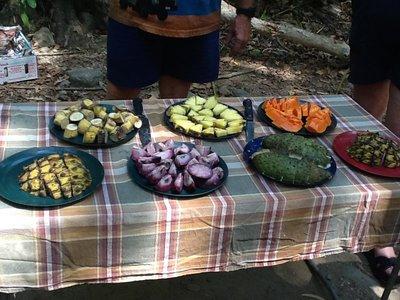 Proeverij van woudfruit uit het regenwoud