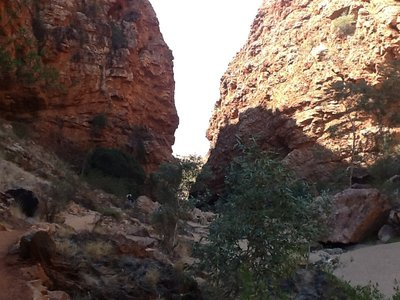 Simpson Gap in de West MacDonnell Ranges op zoek naar rock wallabies en gevonden