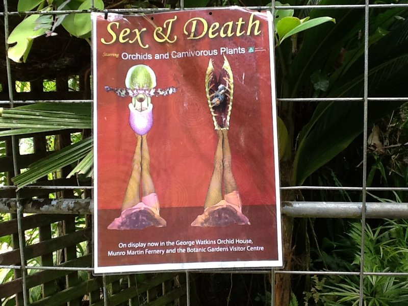 De titel spreekt voor zich.....nog steeds in de botanical garden