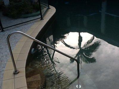 Met de weerspiegeling in het zwembad....allerlaatste zwempartij :-(