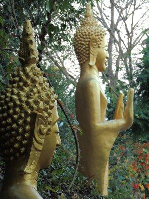 Buddhas on Mount Phousi