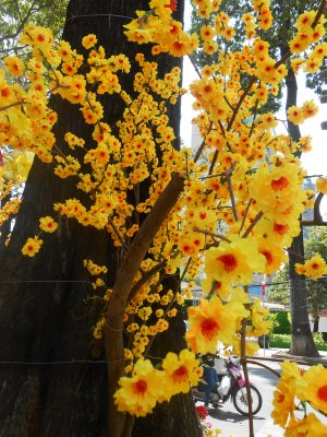 Flower decorations for Tet, Saigon