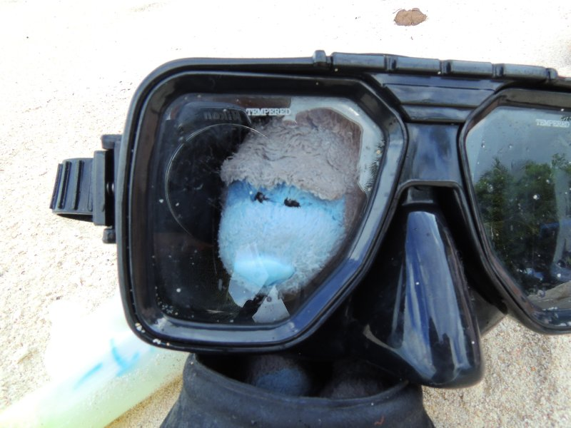 Patch in his snorkel gear