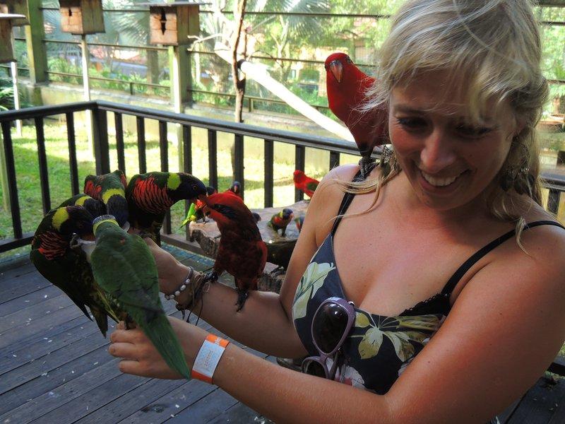 The birds LOVED Jo!