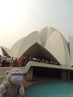 Patch at the Lotus Temple