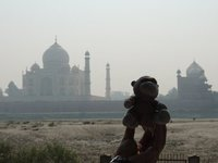 Patch as close as he could get to the Taj Mahal, at the site of the Black Taj!