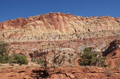Capitol Reef NP 114