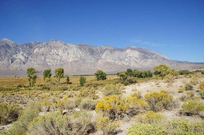 Death_Valley_001.jpg