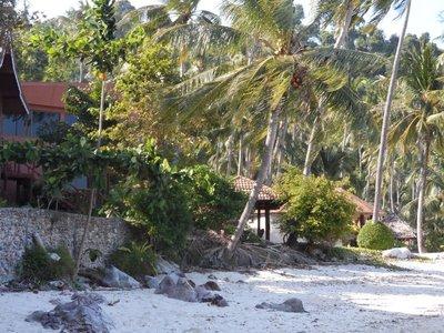 Koh_Ngai_R..beach_front.jpg