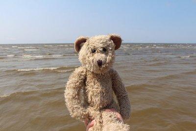 Henry @Pärnu Beach