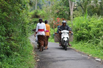 Busy Balinese Roads