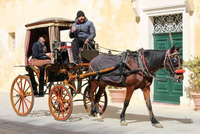 Traditional Horse and Carriage - Mdina
