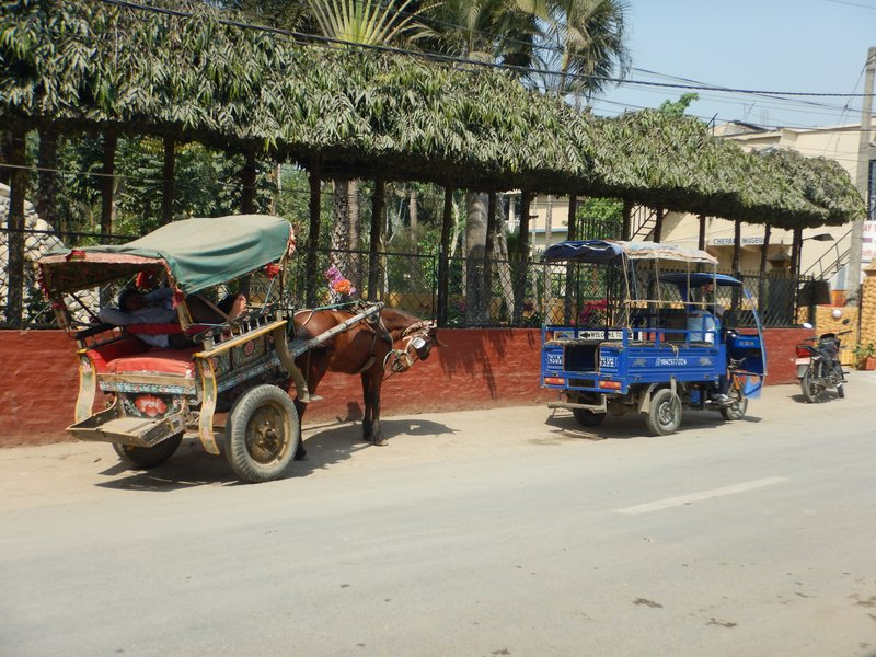 Transport Options in Sauraha