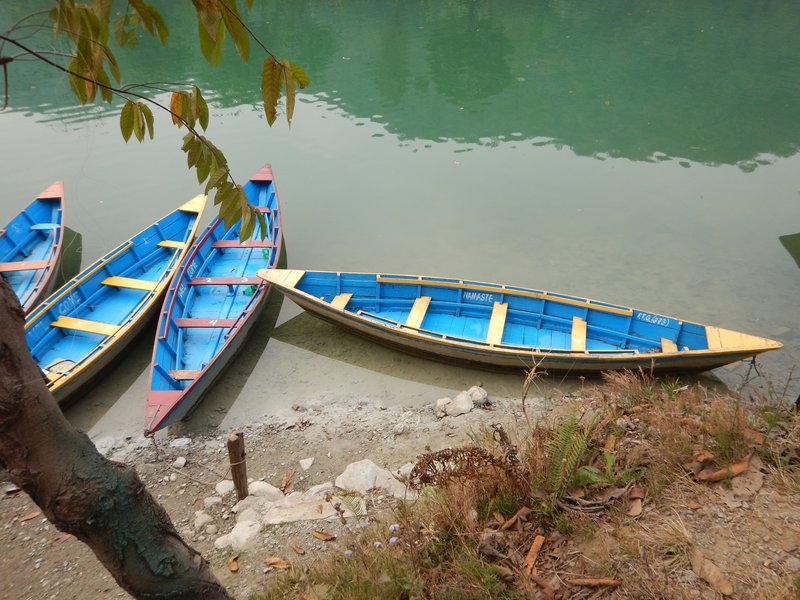 Colourful boats on Phewa Lake