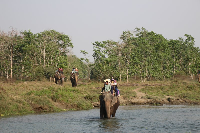 Crossing the river by elephant