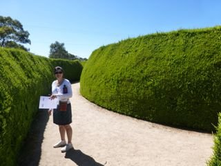 Mum looking lost in the maze