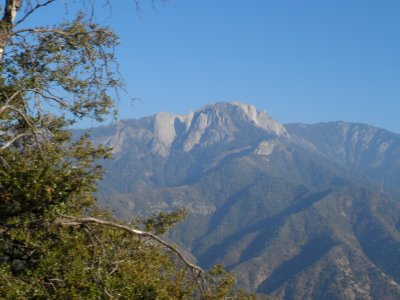 Giant mountainsides covered with trees -- many other huges ones besides the giant sequoias.