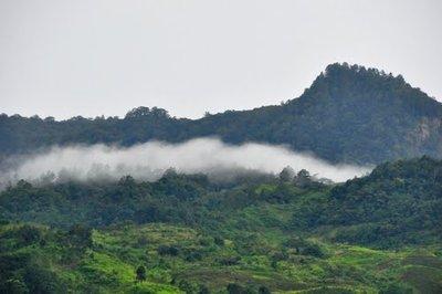 Ngoc Linh Mt.