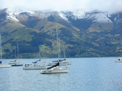 Akaroa Harbour from our room