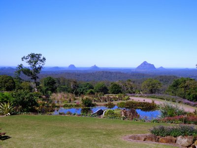 1731 Maleny Botanic Gardens Qld
