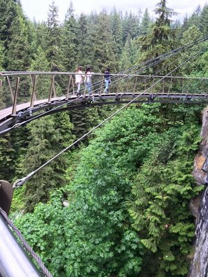Capilano Suspension Bridge Cliff Walk, Vancouver