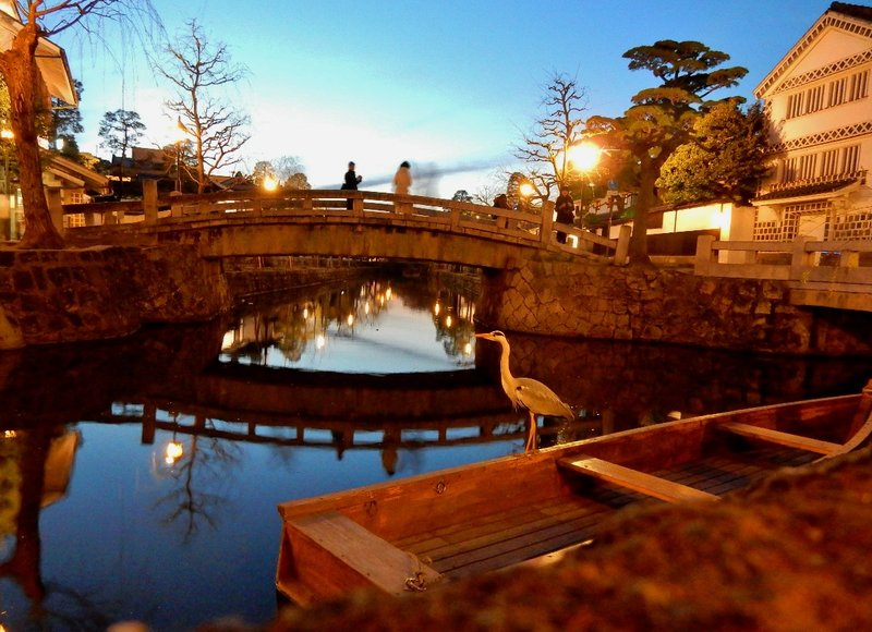 Heron at Bikan Historical District in Kurashiki
