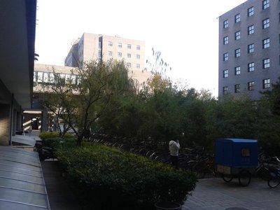 2012-11-14_13_32_53.jpg
