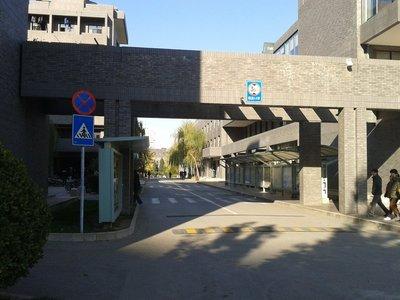 2012-11-14_13_36_14.jpg