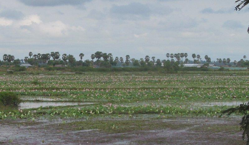 large_cambodia_last_day_007.jpg