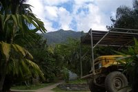 Naitonal Park outside La Ceiba