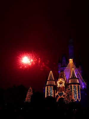 Disneyland Castle fireworks (red)