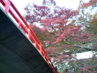 Red bridge, red leaves