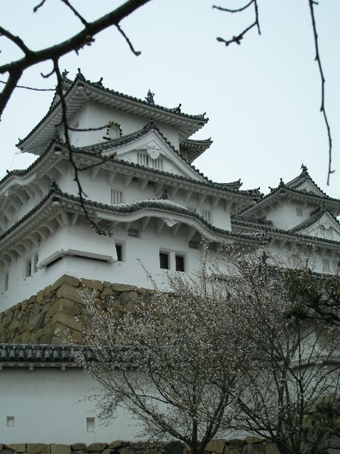 Castle and Blossoms