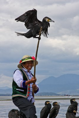 Bai fisherman using cormorants