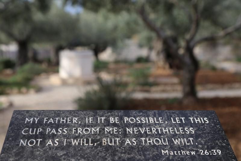 Olive Garden at Gethsemane
