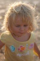 Cedar at Cable beach
