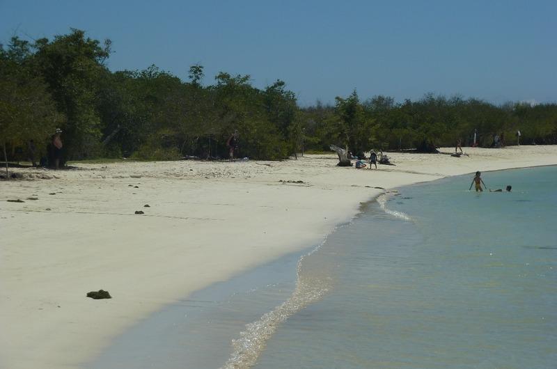 Shoreline at Tortuga
