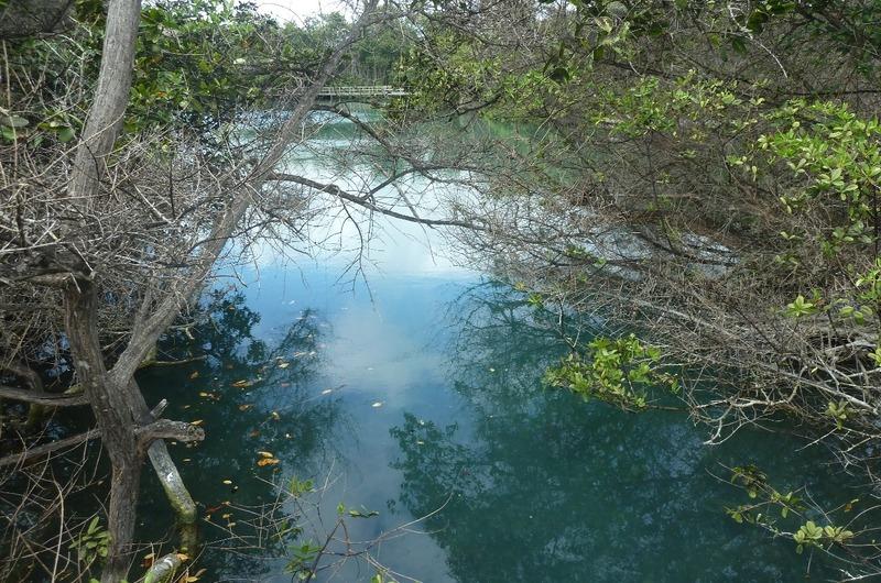Half way around the lagoon