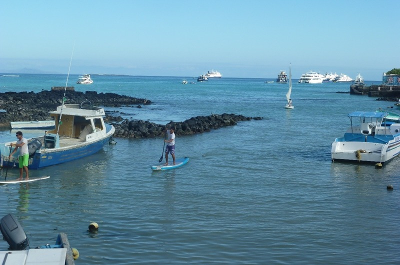STAND UP PADDLING MARKET