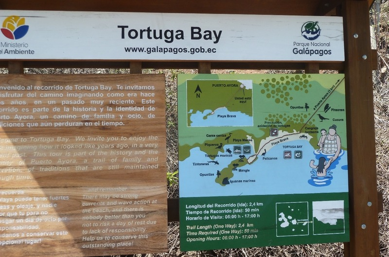 MAP OF TORTUGA BAY