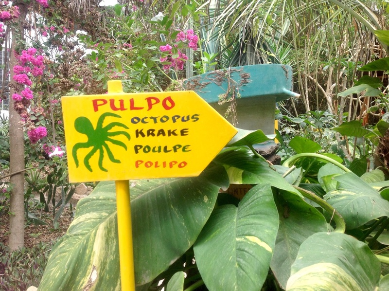 Signage guiding us to our bungalow