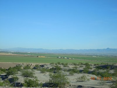 Bestellte Felder in Nevada